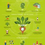 Infografik mit Zahlen und Fakten zu Zucker aus Deutschland